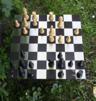 RVS lasergraveren schaakbord